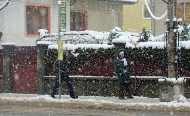 Ninge frumos in Sibiu          degeaba